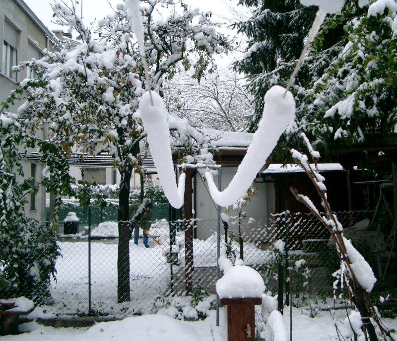 Danni causati da questa nevicata for Fili per stendere